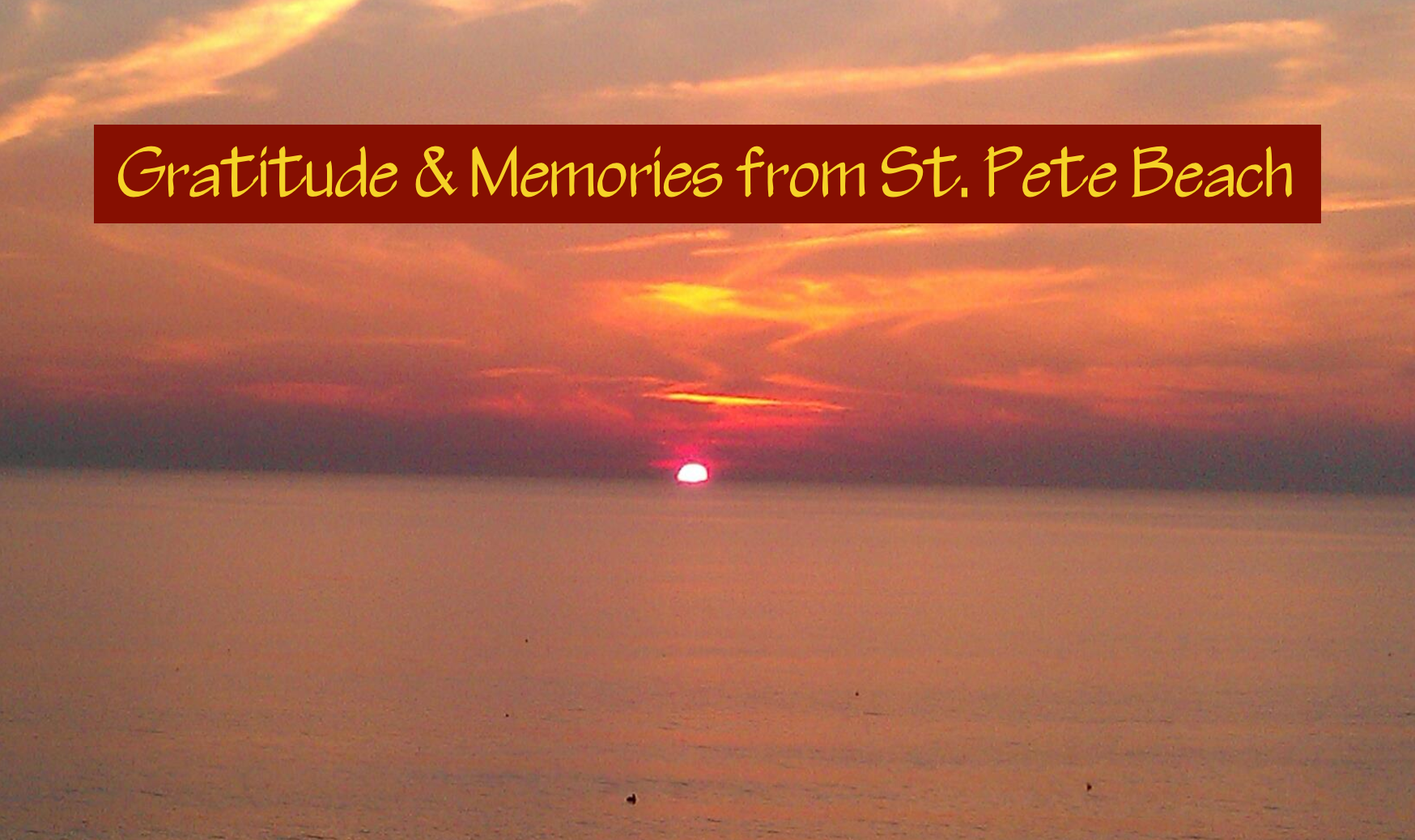Gratitude and Memories from St Pete Beach