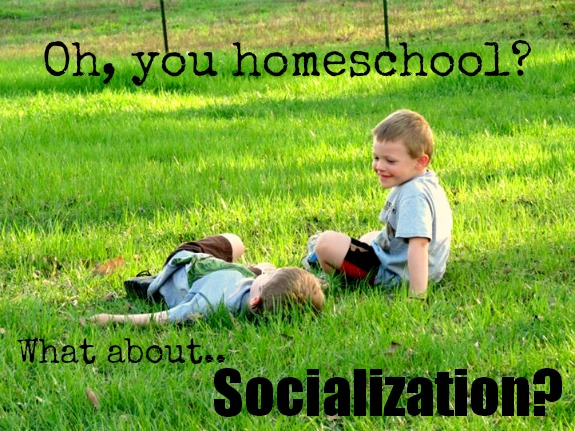 virtual school homeschooling issues are a myth